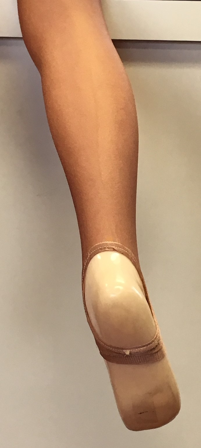 Danskin Child Shimmery Stirrup Tights