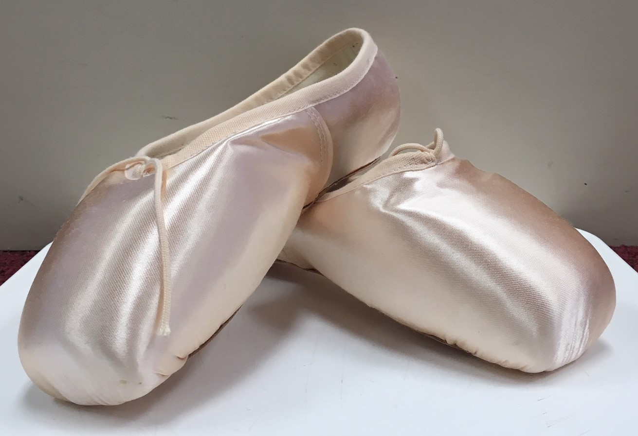 Bloch Women's Signature Rehearsal Pointe Shoes